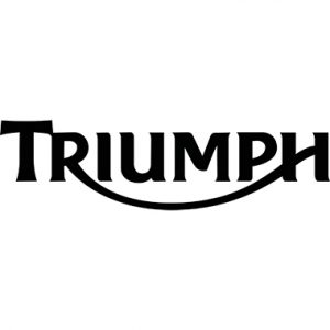 Triumph Genuine Motorcycle Oil Filter